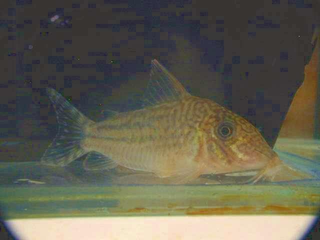20070716-3.jpg